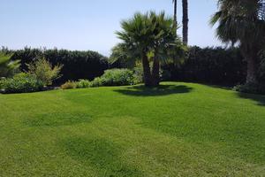 Villa di 4 Camere - El Sauzal (0)