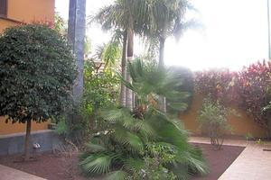 2 Bedroom Duplex - Puerto de la Cruz (3)