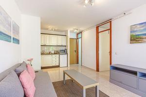 1 Bedroom Apartment - Las Americas - Torres Yomeli (1)