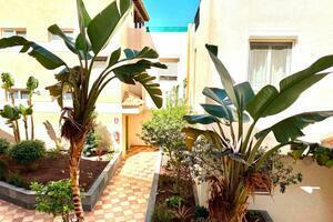 Appartamento di 2 Camere - Los Cristianos - El Rincon (1)